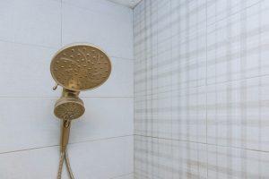 Best Retro Shower Head